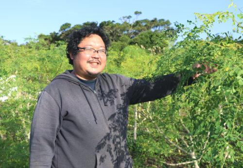 モリンガ農家_永井さん